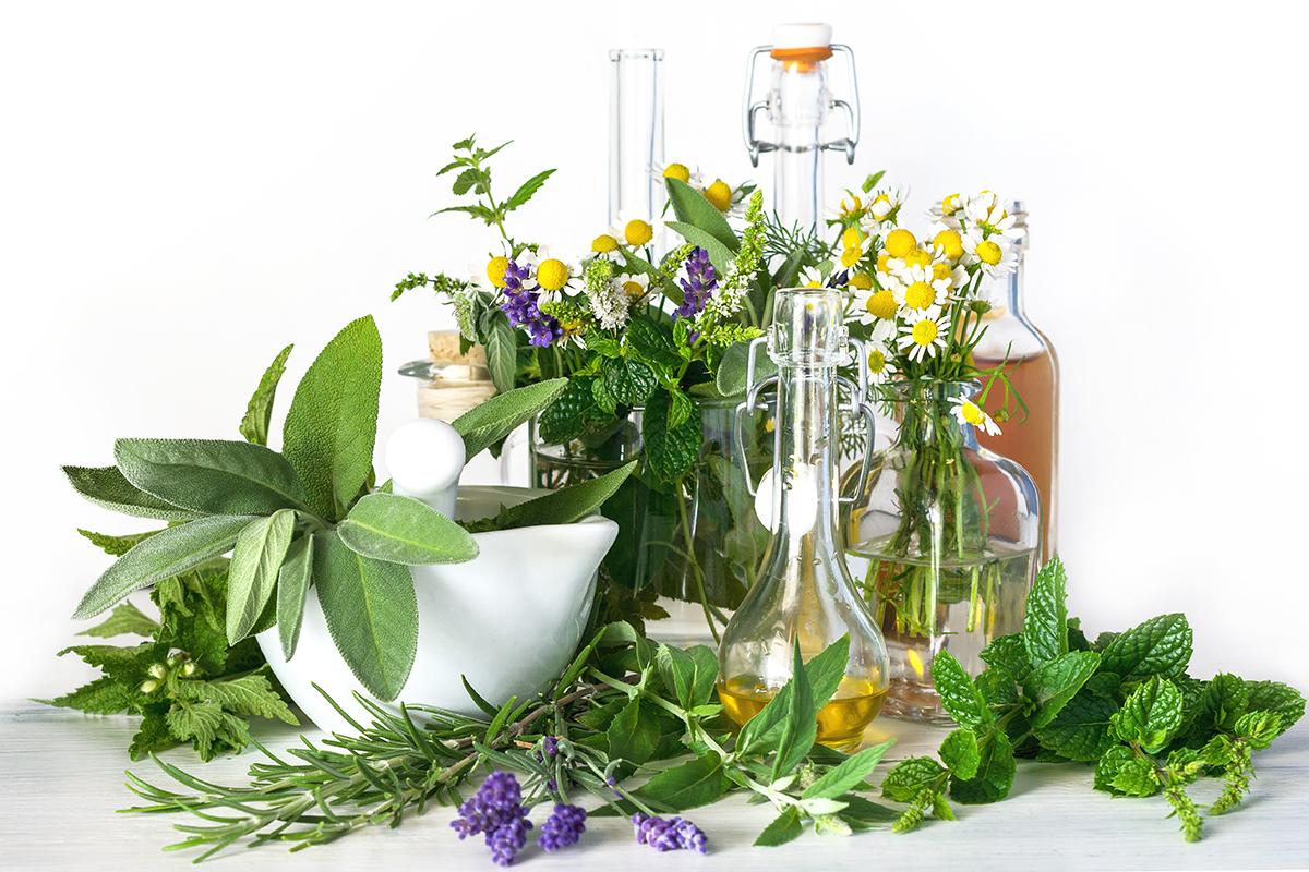Heilpflanzen und Heilkräuter, ätherische Öle, Mörser und Fl