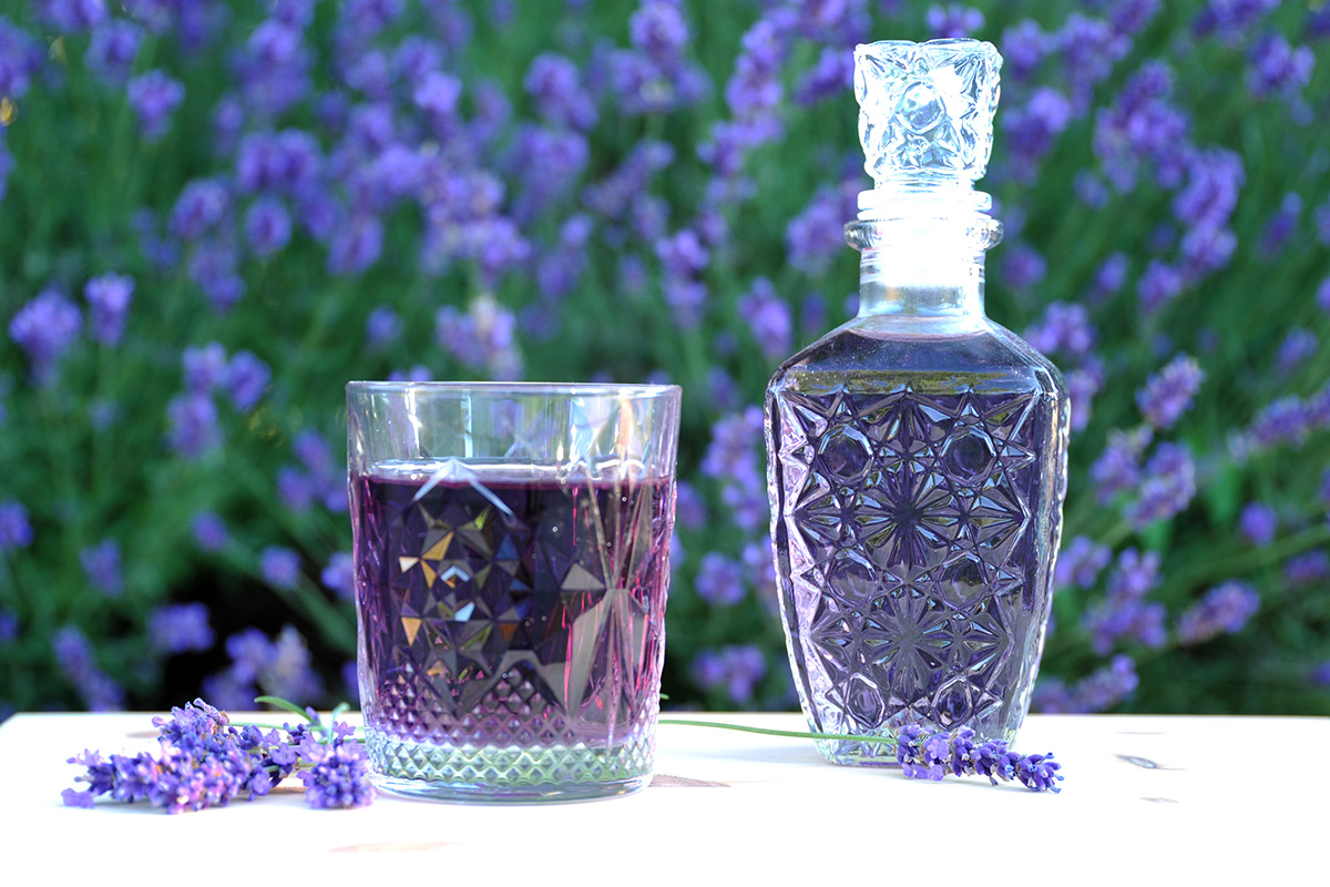 Der Lavendelsirup ist ein gesunder Durstlöscher, eignet sich zum Aufspritzen mit Mineral- oder Leitungswasser und schmeckt auch in Kombination mit Sekt.